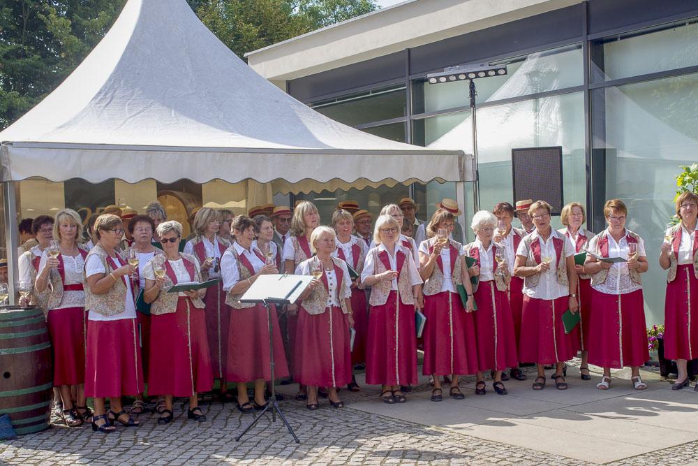 Winzerchor Meißen - Auftritt zum Tag des offenen Weinguts 2016